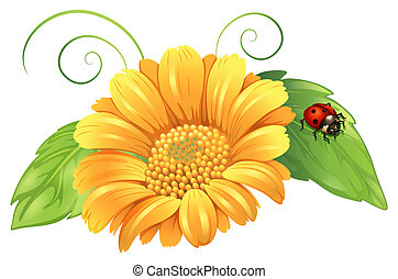 A yellow flower with leaves and a bug - Illustration of a...
