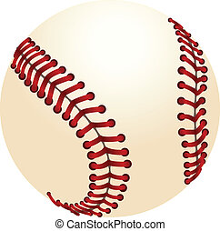 Baseball - Vector illustration of realistic baseball