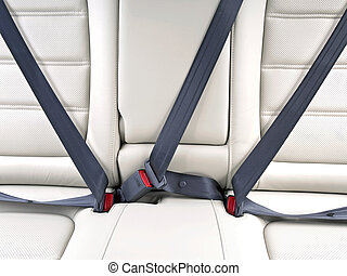 fasten seat belts in the car for safety - fasten seat belts...