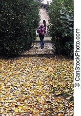 Walking in the Fall