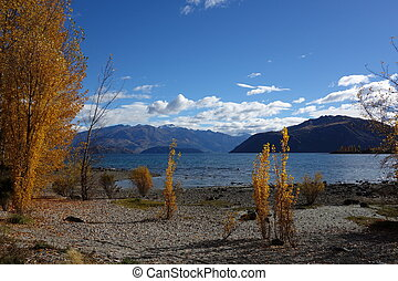 Autumn in Wanaka - Autumn on the coast of Wanaka Lake New...