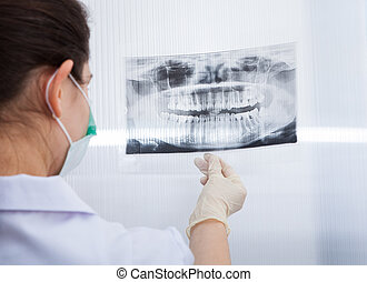 Female Dentist Looking At Dental Xray - Rear view of female...