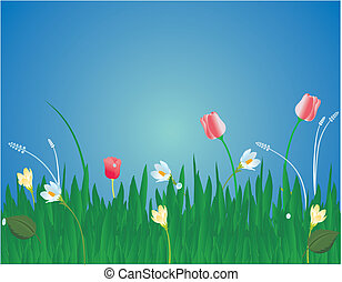 Blossoms in the grass illustration - Tulips, crocuses, and...