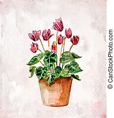 home flowers in a vase. watercolor