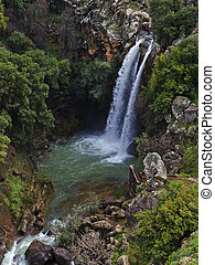 Golan Heights - Banias waterfall in the spring at the Golan...