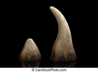 Rhino horn - Rhinoceros horn sold on the black market for...