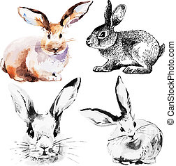 Set of Easter rabbits Hand drawn sketch and watercolor...