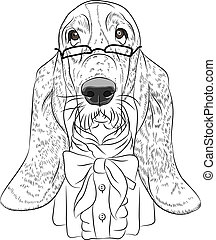 vector funny cartoon hipster dog Basset Hound - hipster dog...