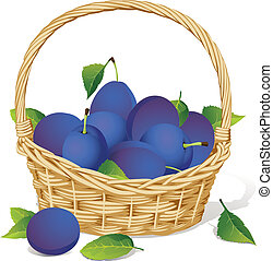 basket with plums