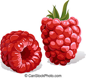 raspberry isolated