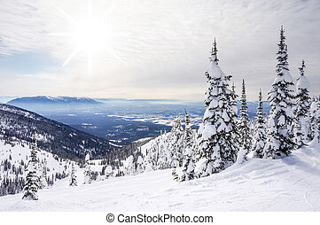Winter Landscape on Big Mountain in Montana - White winter...