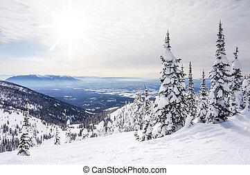 invierno, paisaje, grande, Montaña, Montana