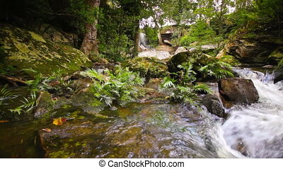 Dolly: Beautiful waterfall in tropical forest at Phu...
