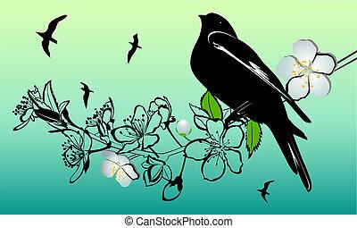Brindille, cerise, fleurs, oiseau