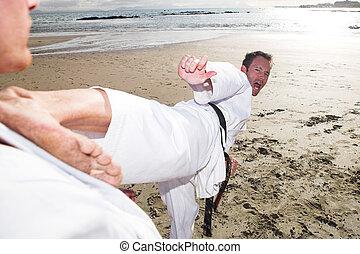 karate, deportistas