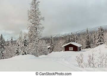 Garage with winter mountain in the background - Midwinter...