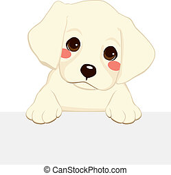 Labrador Puppy Banner - White labrador golden retriever...