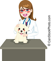 Puppy Visiting Veterinarian - Cute labrador puppy sitting on...