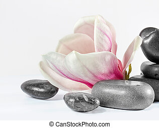 Zen stones with flower magnolia