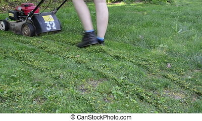 girl movs lawn cut - Girl in shorts mows lawn in summer...