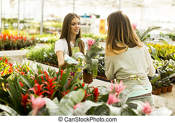 Young women in the flower garden