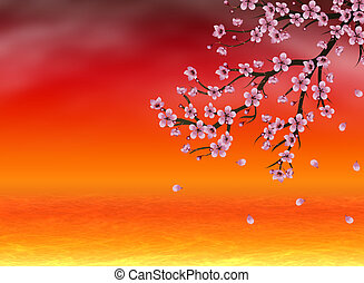 Sakura at Sunset Time - Pink cherry blossom, sakura branch...