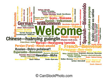 Welcome phrase words cloud concept - Welcome phrase in 78...