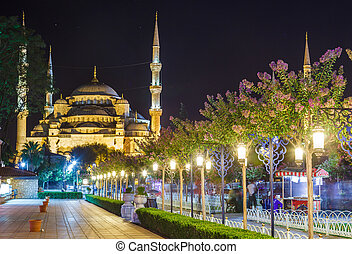 Blue Mosque in Istanbul, and the alley with lanterns in...