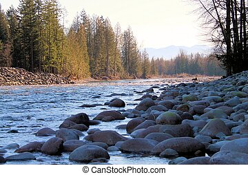 Along the Vedder River - Standing on the edge of the Vedder...