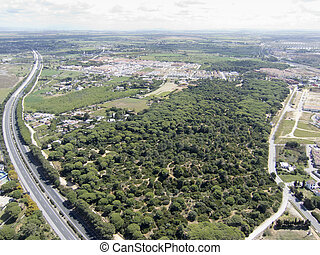forest green - air landscape green area near a city