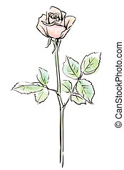 Single pink rose flower isolated on the white  background, vector illustration