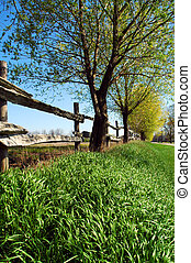 Rustic Fence Line - Low angle shot of a rustic split rail...