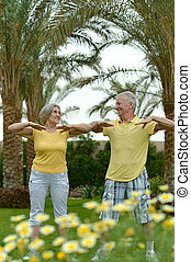 Senior couple exercising at the resort during vacation