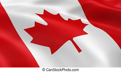 4K Canadian flag - Canadian flag waving in the wind. Part of...