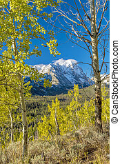 Sawtooth mountains of Idaho autumn - Beautiful natural...
