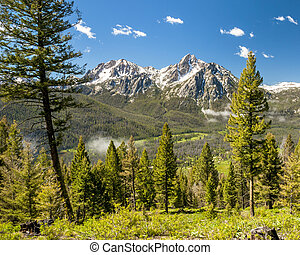 Idaho mountains forest and blue sky - Mountain valley forest...