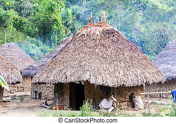 Indigenous Village - Houses in an indigenous village...