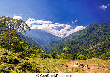 Green Hills and Blue Sky - Lush green hills in the Sierra...