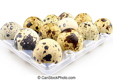 Twelve quail eggs in egg carton, isolated