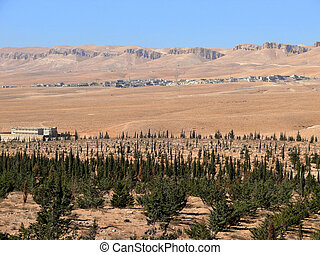 Syria. Desert. A small village. Landscape nature.