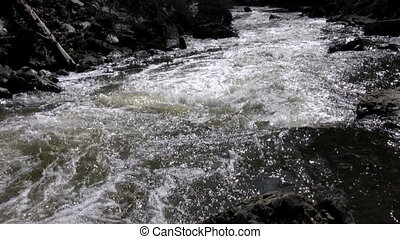 River Rapids - close up of fast moving rapids