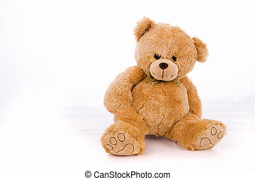 teddybear isolated on white background