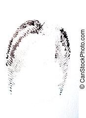 Fingerprint - detail of black fingerprint isolated on white