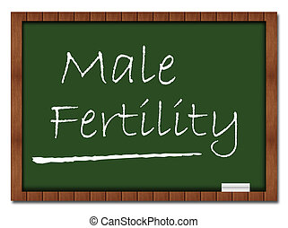 Male Fertility - Classroom Board - Male Fertility text...