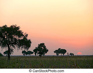 Southwest Sudan Sunset Landscape nature - Africa Southwest...