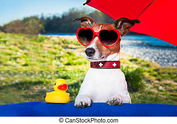 summer dog under umbrella - dog with yellow duck and...