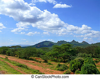 Forested mountains. Landscape nature. Africa, Ethiopia.
