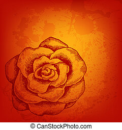 Hand drawn rose vector background for Your design