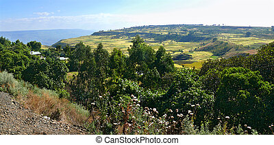 Ethiopian landscape nature. Valley in the valley of the...