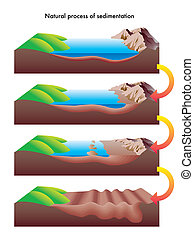 sedimentation - illustration of the process of sedimentation